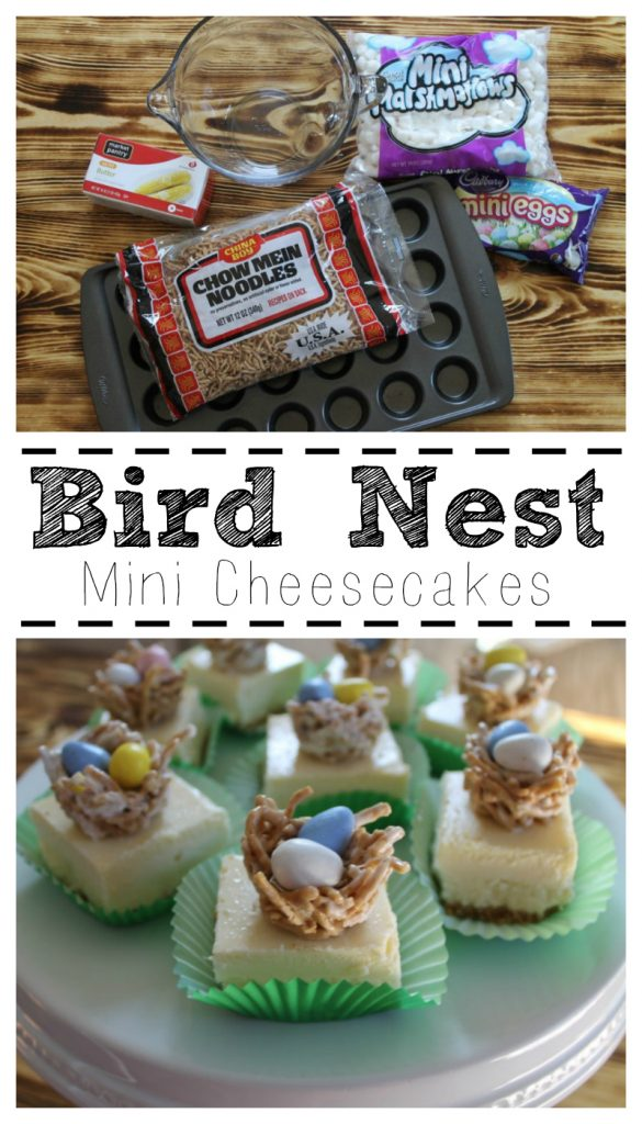 Bird Nest Mini Cheesecakes
